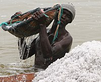 Manual salt collection in Lake Retba, Senegal.