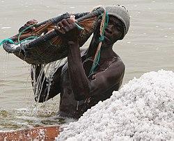 Un récolteur de sel au lac Rose (Sénégal)