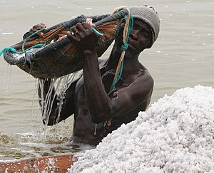 Sea salt - Manual salt collection in Lake Retba, Senegal