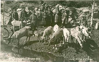 utstillingen bergen 1898