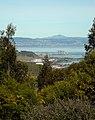 San Bruno Mountain Park (4441819747).jpg