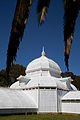 San Francisco Conservatory of Flowers-21.jpg