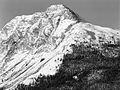 Sandpiper peak near Rose Lake, Yukon (16896564617).jpg