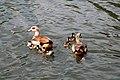 Sandringham 23-05-2011 (5757995087).jpg