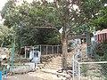 Saptur R.F., Tamil Nadu, India - panoramio (10).jpg