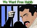 Save-Habib-Latifi-FarzaM2-800X600.jpg