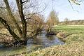 Schlangen - 2015-04-12 - LIP-001 Strothe-Niederung (10).jpg