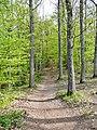 Schwarzwald-Schwäbische-Alb-Allgäu-Weg (HW5) im Naturpark Schönbuch - panoramio (2).jpg