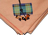 scout wood badge bead and neckerchief