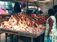 A seashell vendor sells seashells which have been taken alive from the water, killing the animal inside.