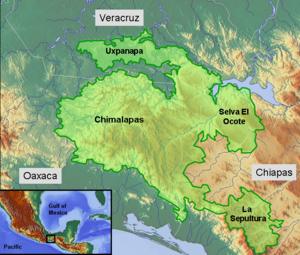 Selva Zoque - Selva Zoque region of Southern Mexico