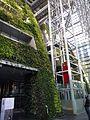 Seoul City Hall green wall 2.JPG
