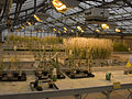 Serres Arabidopsis IJPB Versailles-3-cliche Jean Weber (22522084874).jpg