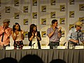 Sharif Atkins, Marsha Thomason, Tiffani Thiessen, Tim DeKay & Matt Bomer (4847216797).jpg