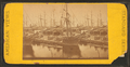 Shipping, Charleston, S.C, from Robert N. Dennis collection of stereoscopic views.png