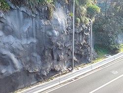 چیست Sprutbetong – Wikipedia
