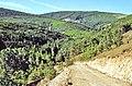 Sierra Norte 1979 09.jpg
