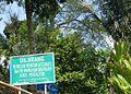 Situs Megalitikum Gunung Padang, Cianjur - panoramio (4).jpg
