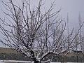 Skardu winters 2.jpg
