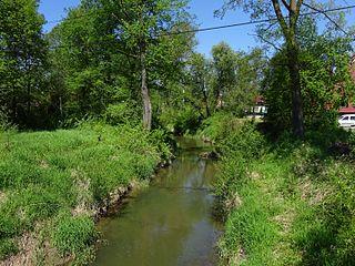 Skawinka river in Poland