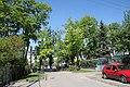 Skrzyżowanie ul. Chocimskiej z ul. Kasztanową (drzewa wzdłuż niej rosnące to pomniki przyrody) - Marki - panoramio.jpg