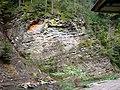 Slănic Moldova, depuneri de sulf și fier - panoramio.jpg