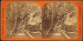 Slippery Rock Brook, by E. & H.T. Anthony (Firm).png
