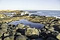 Small Cove - panoramio.jpg