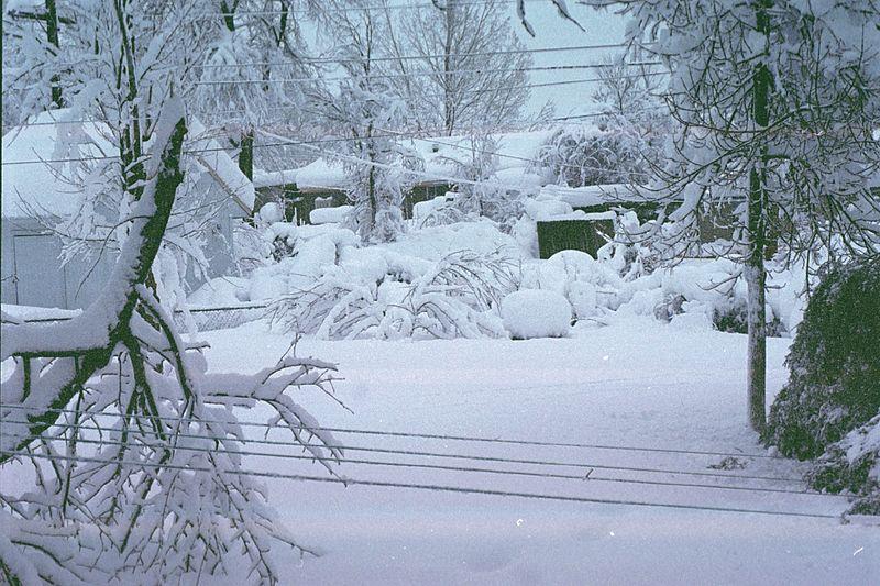 Cleveland Snow storm