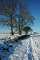 Snow covered bridleway, Earl's Croome - geograph.org.uk - 1660057.jpg