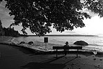 Solitude at Stanley Park (3978591184).jpg