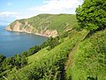 South West Coast Path above Lynmouth Bay - geograph.org.uk - 1412477.jpg