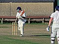 Southwater CC v. Chichester Priory Park CC at Southwater, West Sussex, England 098.jpg