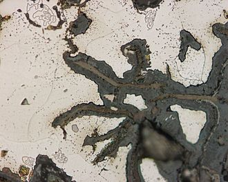 Selective leaching - Selective corrosion on cast iron. Magnification 500x