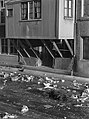 Stadsarchief Amsterdam, Afb ANWP00123000012.jpg
