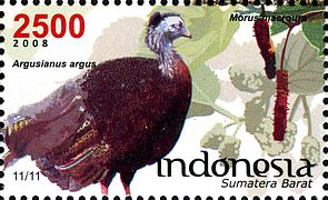 Stamps of Indonesia, 101-08.jpg