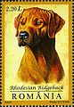 Stamps of Romania, 2005-094.jpg
