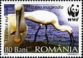 Stamps of Romania, 2006-112.jpg