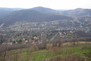 Suburban settlement in Petrovaradin, South Bačka, Serbia