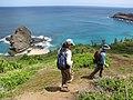 Starr-130320-3411-Syzygium cumini-habit view Makapili Rock with Jessi and Kim-Nihoku Mokolea Pt Kilauea Pt NWR-Kauai (25209154755).jpg