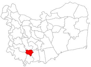Stejaru, Tulcea Commune in Tulcea, Romania