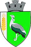 Coat of arms of Drochia