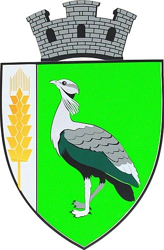 Drochia - Image: Stema Drochiei
