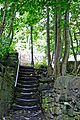 Steps (2661428927).jpg