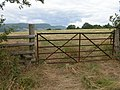 Stile and gate near Cefn Campstone - geograph.org.uk - 216740.jpg