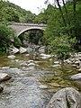 Stream, near Zonza (2584378773).jpg