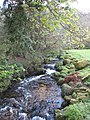 Stream at the head of Polwheveral Creek - geograph.org.uk - 760680.jpg