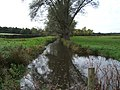 Stream near Chasemore Farm - geograph.org.uk - 89099.jpg