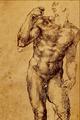 Studio d'Uomo Nudo - Michelangelo Buonarroti.png