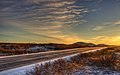 Sunny Road (5282721603) (2).jpg
